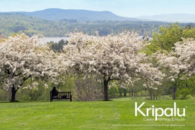 Kripalu Yoga Center in Spring