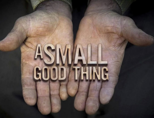 Film: A Small Good Thing (2015)
